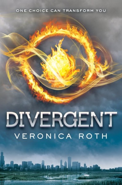 The cover does make me think Hunger Games.