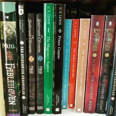 bookshelf close-up