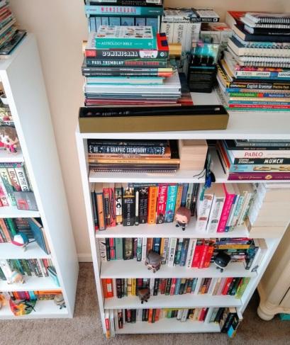 Zezee updated shelves 2 2020